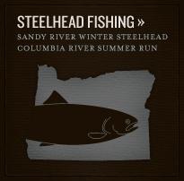 callout-steelhead
