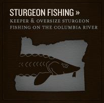 callout-sturgeon
