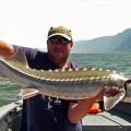 Columbia River Gorge keeper sturgeon - July 2009