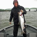 Columbia River spring chinook - April 2009