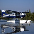 Alaska fly-in salmon fishing