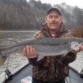 Sandy River winter steelhead - Dec 2013