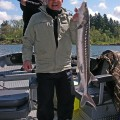 Keeper sturgeon caught near downtown Portland - April 2008