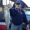 Mike Kraner with a spring chinook salmon -  Mar 2013