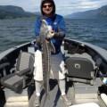 Alan Cunningham - Columbia River Gorge keeper sturgeon - July 2012